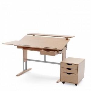 Schreibtisch MOIZI_17